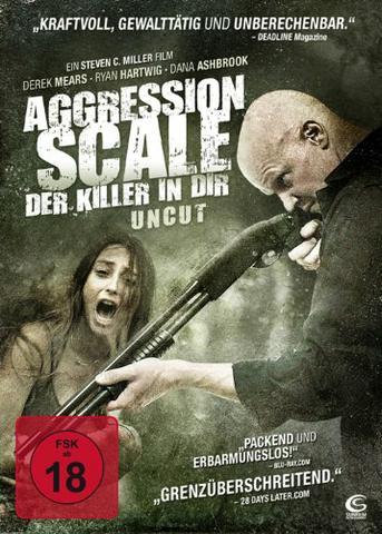 aggreassion scale