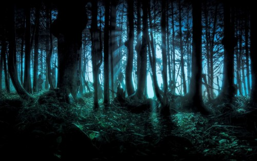 the-forest-