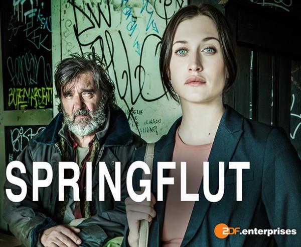 Das Cover von SPRINGFLUT