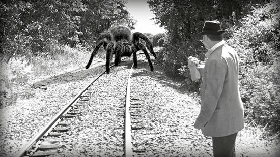 the giant spider (thrillandkill.com)