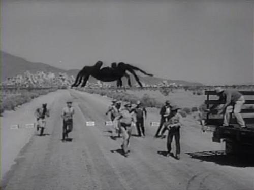 tarantula horrorfilme