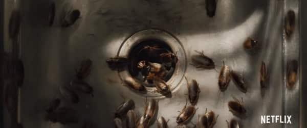 Wounds: Die immer wiederkehrenden Kakerlaken